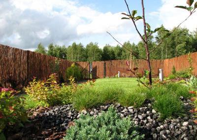 Ogród 020