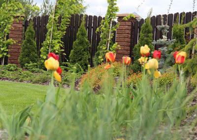 Ogród 015